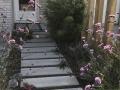 hovenier-mooi-tuinen-dordrecht-IMG-3948