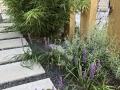 hovenier-mooi-tuinen-dordrecht-IMG-3951