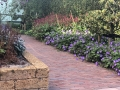hovenier-mooi-tuinen-dordrecht-IMG-3990